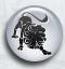 Daghoroscoop  Leeuw door kaartleggers